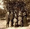 Picture of Rosie Willis, & others in the Fort Pierce, Florida orange grove