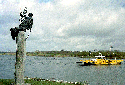 Picture of Statue of Christoffel showing ferry in the background, Broekhuizen, Limburg, Netherlands