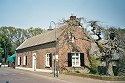 Picture of a house with an interesting tree in Lottum, Limburg, Netherlands